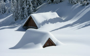 Winter is the best time to buy a house